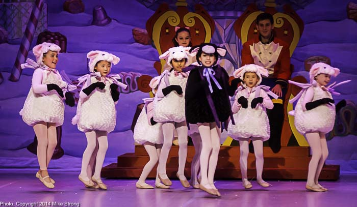 Sheep, a new addition to the cast of characters in 2014: The Black Licorice Sheep is Ximena Flores and the Cotton Candy sheep are: Alice Lenz, Janeisha Nayak , Kristiana Moore, Lily Brewer, Linnaea Xie, Vivian Hsiao, Maddie Vielhauer and Ellie Johnson