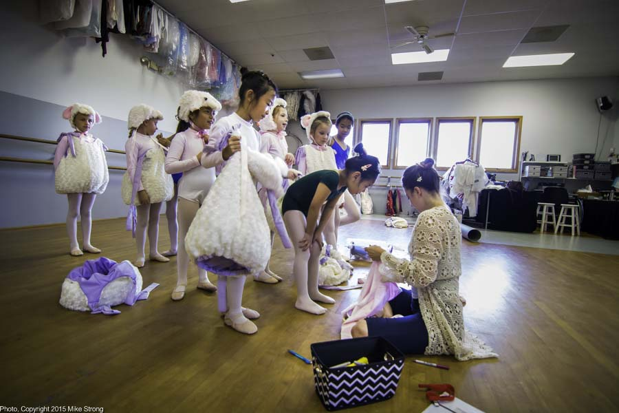 Jennifer Tierney fitting dancers into their sheep costumes